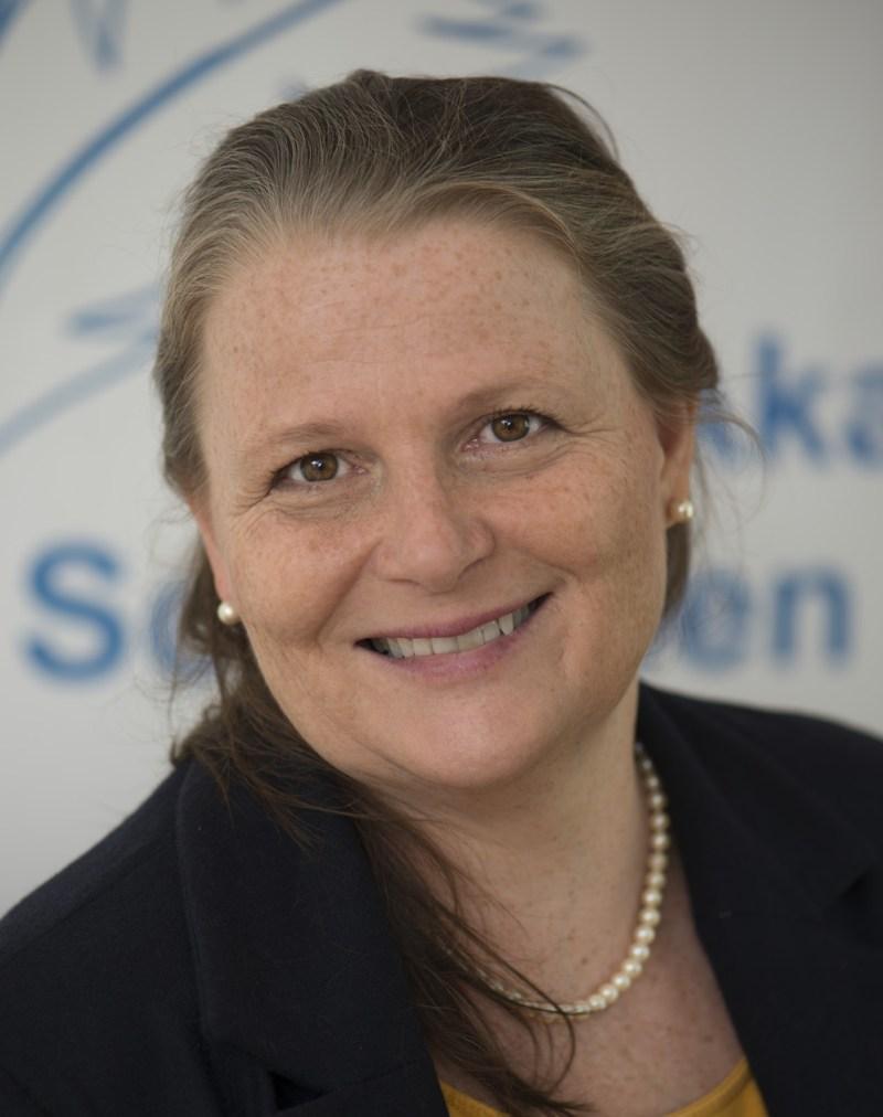 Eva Laspas, Workshopleitung